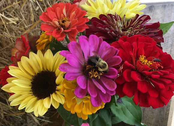 Zinnia Bouquet w/Mini Sunflowers