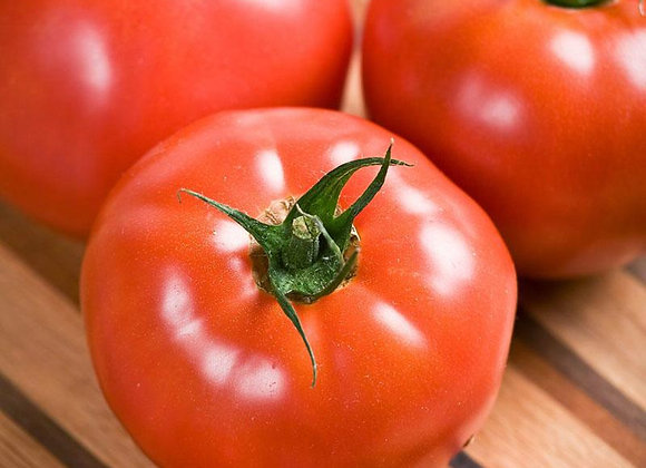 Celebrity Slicing Tomato Plant Sale