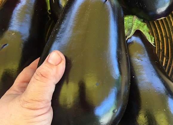 Classic Black Eggplant Large