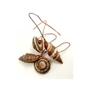 copper shells