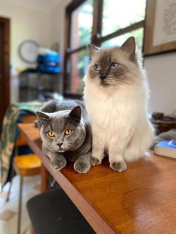 Maurice & Tichka