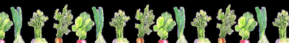 VegetableBorder.png