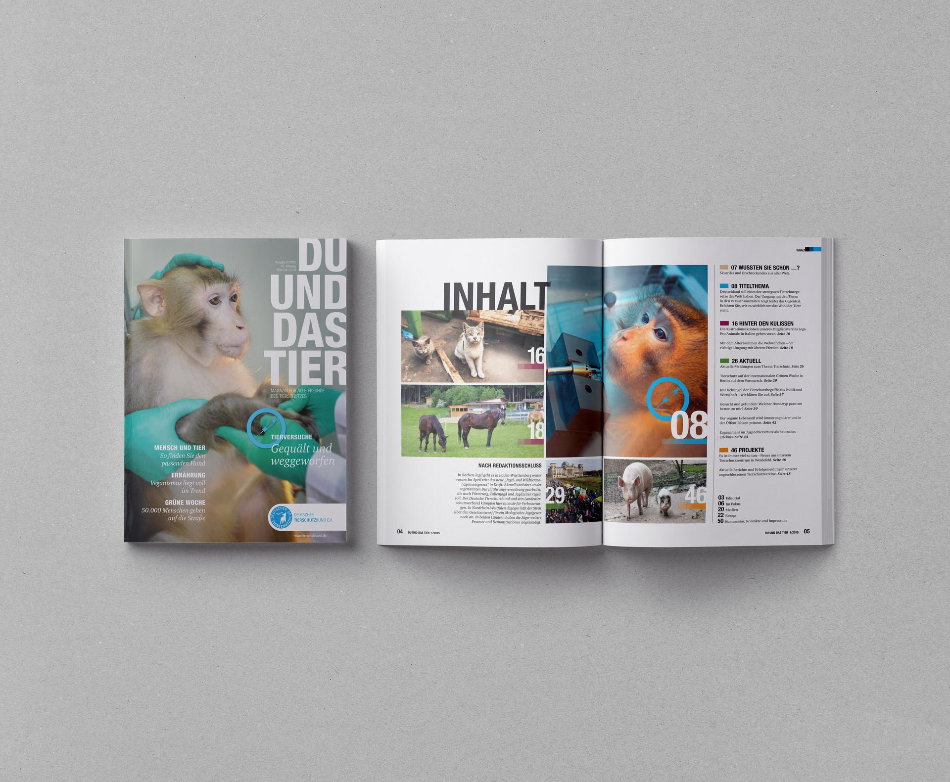 Magazine-USLetter-A4-Mockup-Template_DUD