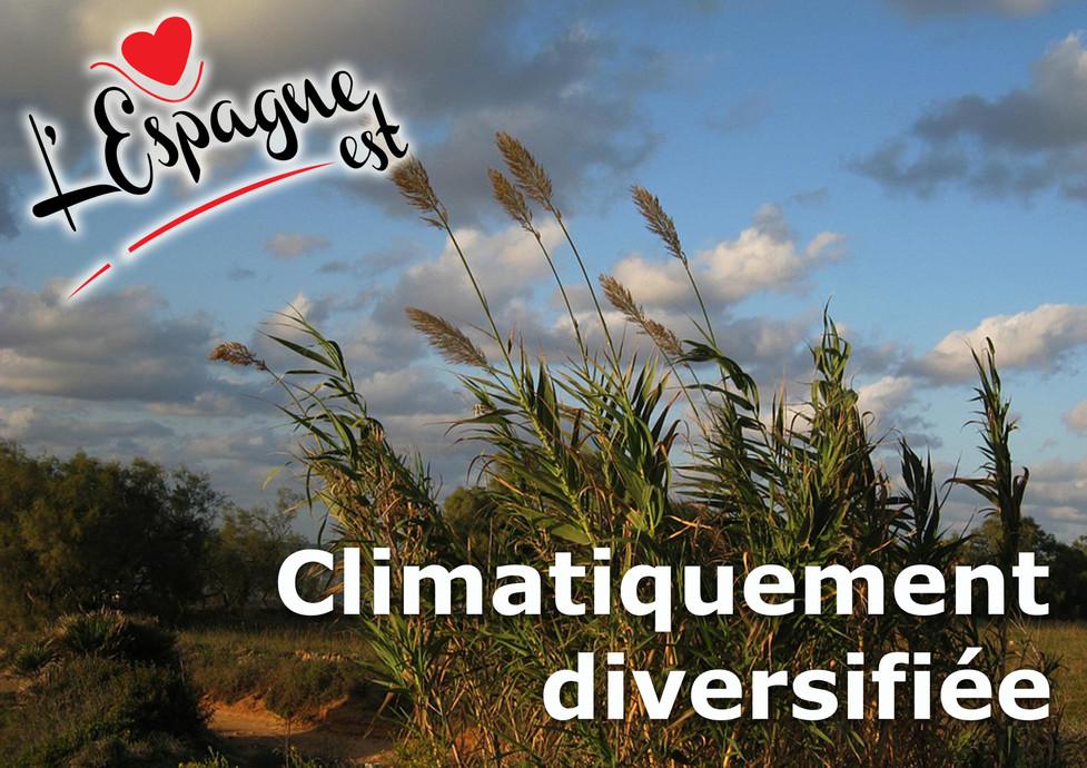 climatiquement diversifiée