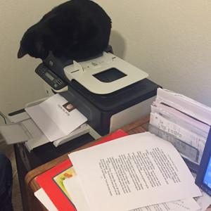 Fanta on the printer