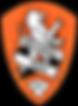 Logo, Agency X, The Commercial Athlete, A-League, Brisbane Roar, Logo,