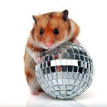 hamster with a ball isolated on a white