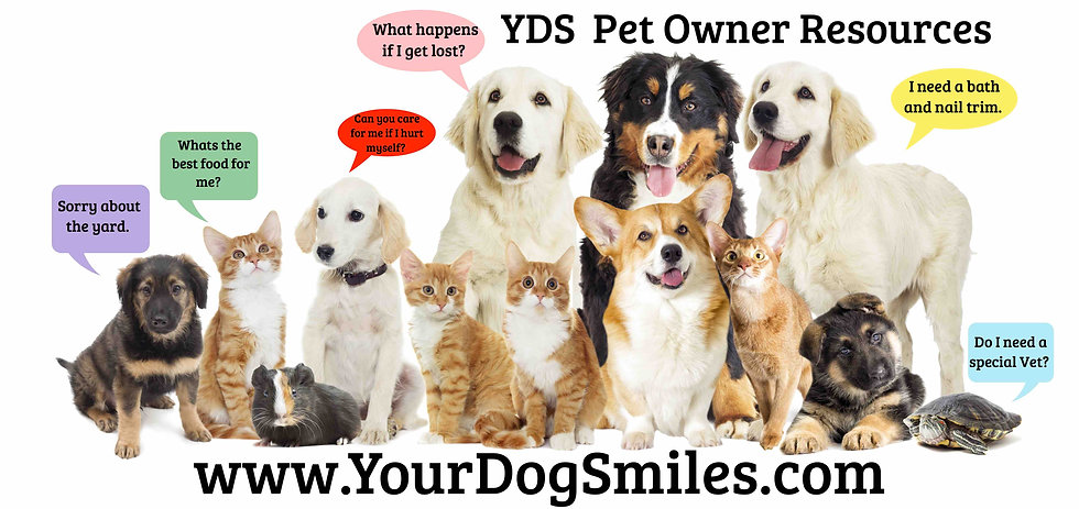 Pet Owner Resources .jpg