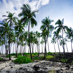 Hawaii Sacred Lands