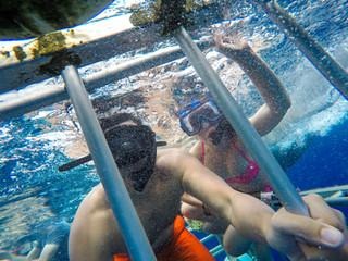 Hawaii Shark Cage Diving