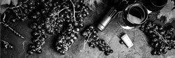 raisins-bandeau_edited