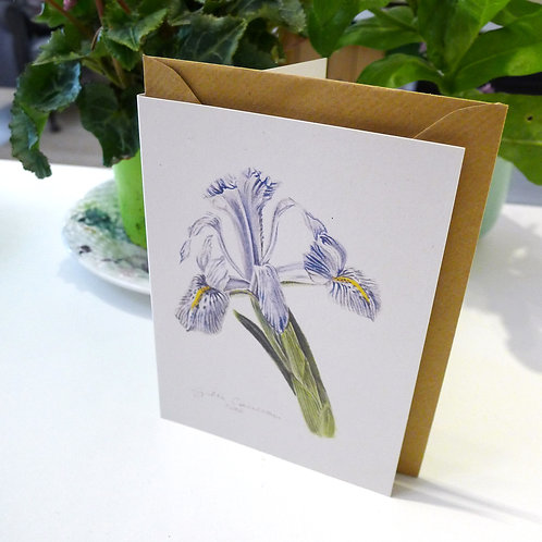 Iris - A6 Greeting Card