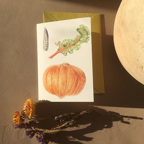 Pumpkin - A6 Greeting cards
