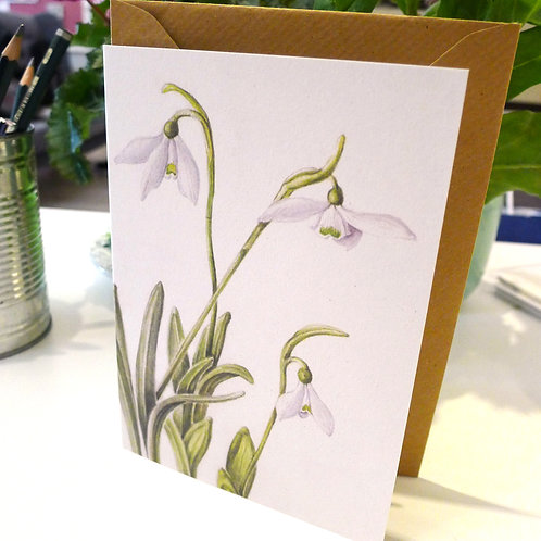 Snowdrops - A6 Greeting Card