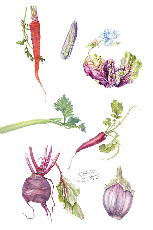 "Tea Towel - The Irish Kitchen Garden - ""Violet"" Veg"