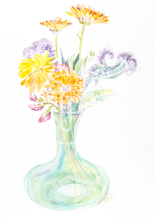 N11. Bee kind: calendula, phacelia and other wild flowers.