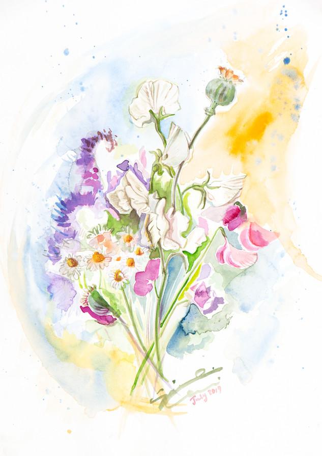 Biodiversity scent. N.13