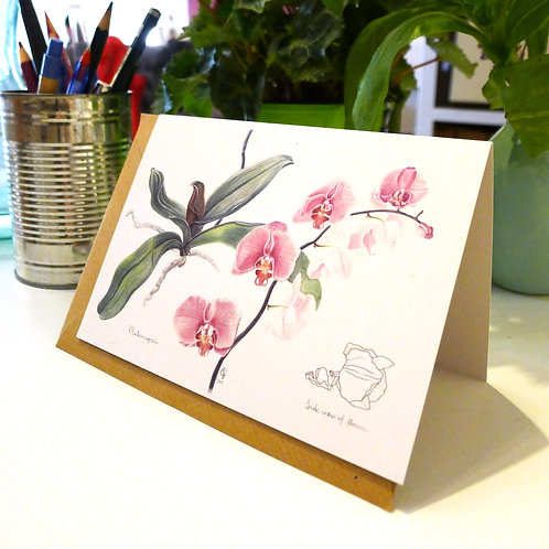 Orchid - A6 Greeting Card