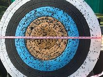 80cm Target Diameter.jpg
