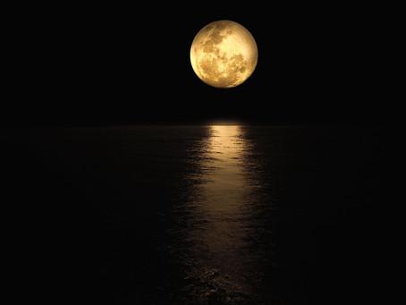 Pleine Lune du 31 Octobre Taureau/Scorpion : voir au delà du moi conscient