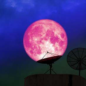 Pleine Lune du 27 Avril dans l'axe Taureau Scorpion : Super Lune rose du Wesak : oser muter !