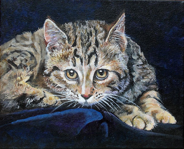 Painting of a tabby kitten