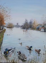Ducks on the Thames at Henley in winter