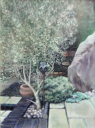 Garden patio with olive tree