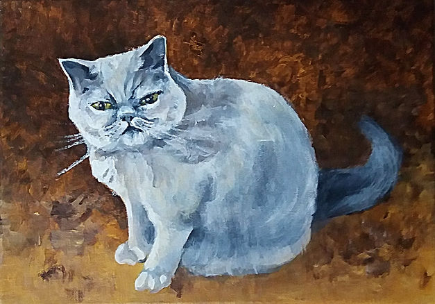 painting of an exotic blue cat