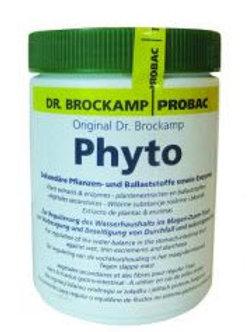 Phyto 500g