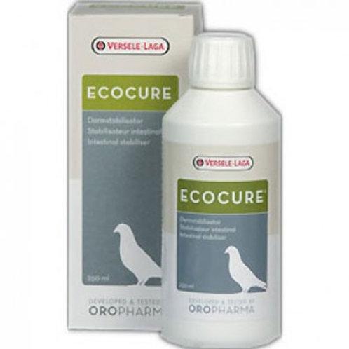 Ecocure (250 ml)