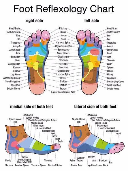 foot-reflexology-chart-23-screenshot.jpg