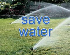 Save Water & Money!
