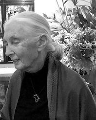 Jane Goodall_bw.jpg
