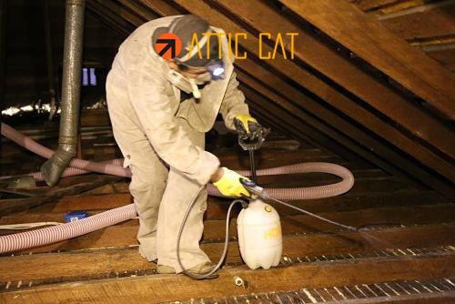 Attic Cleaning/Decontamination