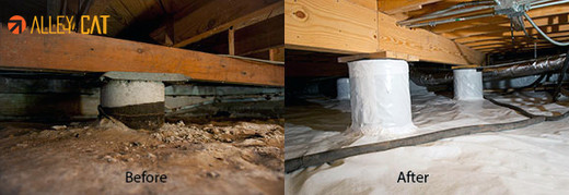 Crawl space before and after photos.