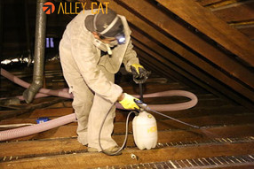 Attic cleanup and decontamination in Walnut Creek, CA.