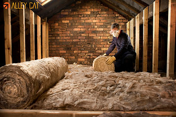 Alley Cat has been providing quality insulation installation, service and maintenance to residential and commercial clients in the Greater Bay Area.
