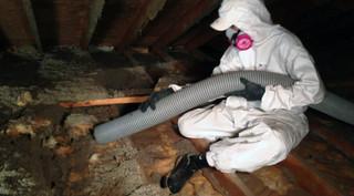 attic-cleaning-remove-cacuum-attic-orang