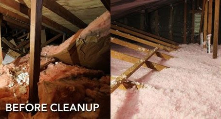 Things You Should Know Before Beginning Your Attic Clean Up