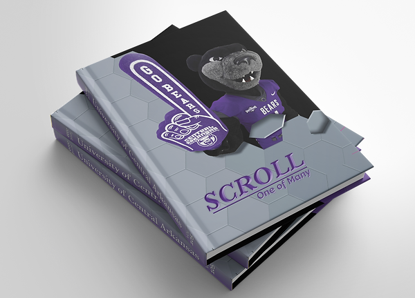 2020 flipbook scroll stack.png
