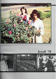 1979 Scroll