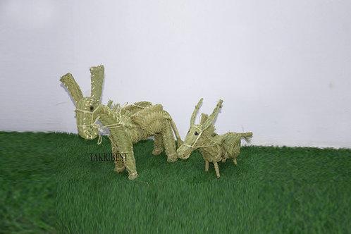 deux âne-M .P-