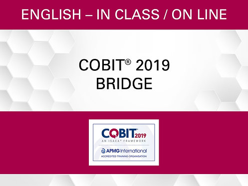 COBIT® 2019 Bridge Certification