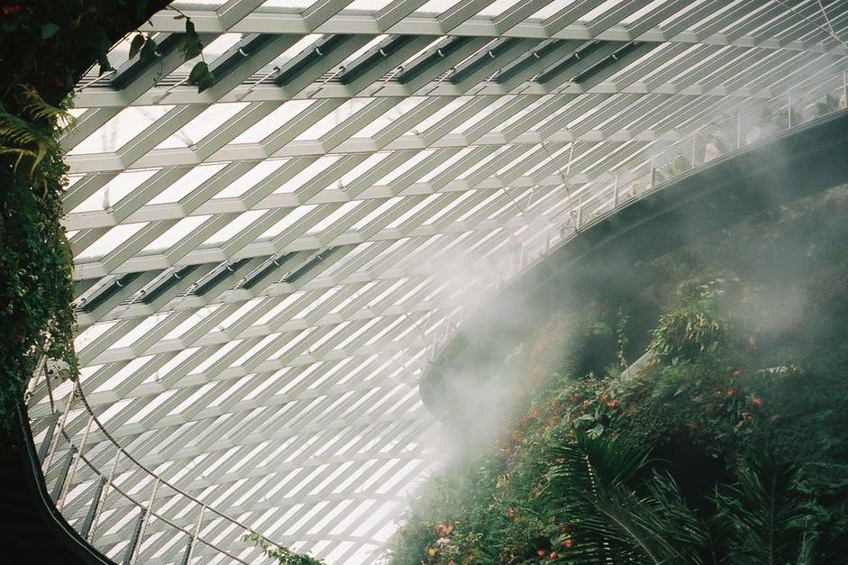 singapore-web-10.jpg