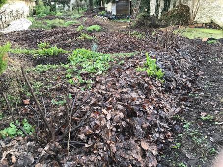 Ré-alimentation en feuilles des espaces