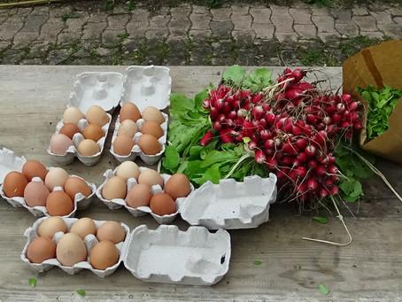 Première vente à la ferme des Longs Sillons de l'année