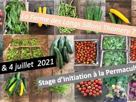 Prochain stage d'initiation à la Permaculture
