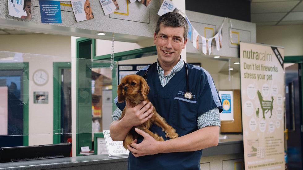 Vet Caring for Animal