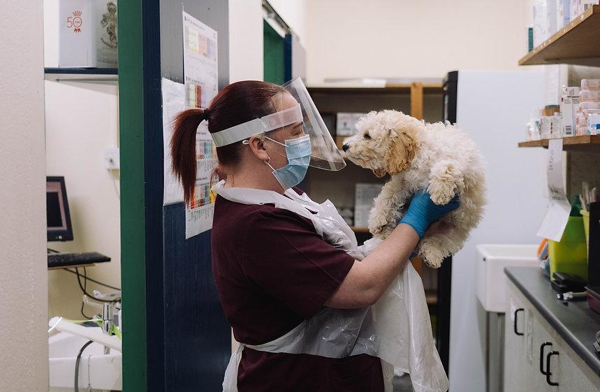 Nurse Caring for Dog